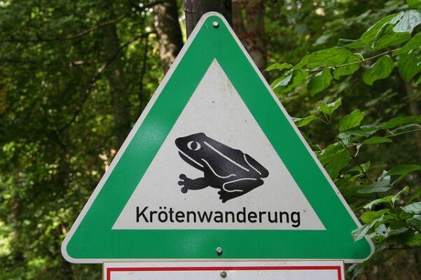 Kröten- und Amphibienwanderung - Vorsicht im Frühjahr! - Krötenschutzzäune-Amphibienzäune-Produkte-für-die-Krötenwanderung